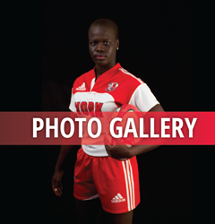 Rugby_Gallery