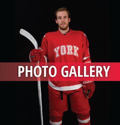 Gallery_hockey