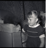 Young girl kneeling beside a upholstered chair looking at a juvenile porcupine drinking out of a bottle.