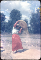 Winnowing Palay, Bulacan