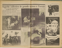 L'Express de Toronto, December 07, 1979, pages 10 and 11