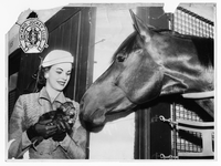 Racehorses : Canadian Champ and Kitten.