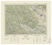 National Topographic Series (scale 1:125,000) : Golden Lake, Quebec-Ontario [sheet 31F/NW]