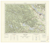 National Topographic Series (scale 1:125,000) : Golden Lake, Ontario-Quebec [sheet 31F/NW]