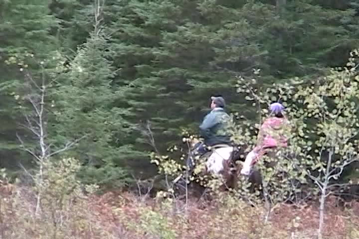 Long family videos : horseback riding
