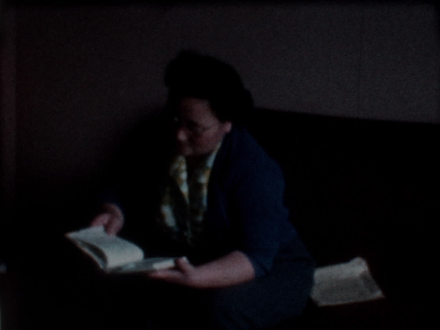 Watada family videos : woman reading a book