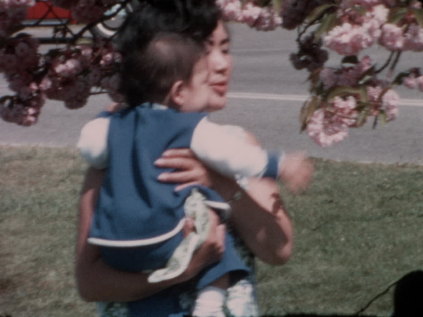 Watada family videos : baby outside cherry blossoms