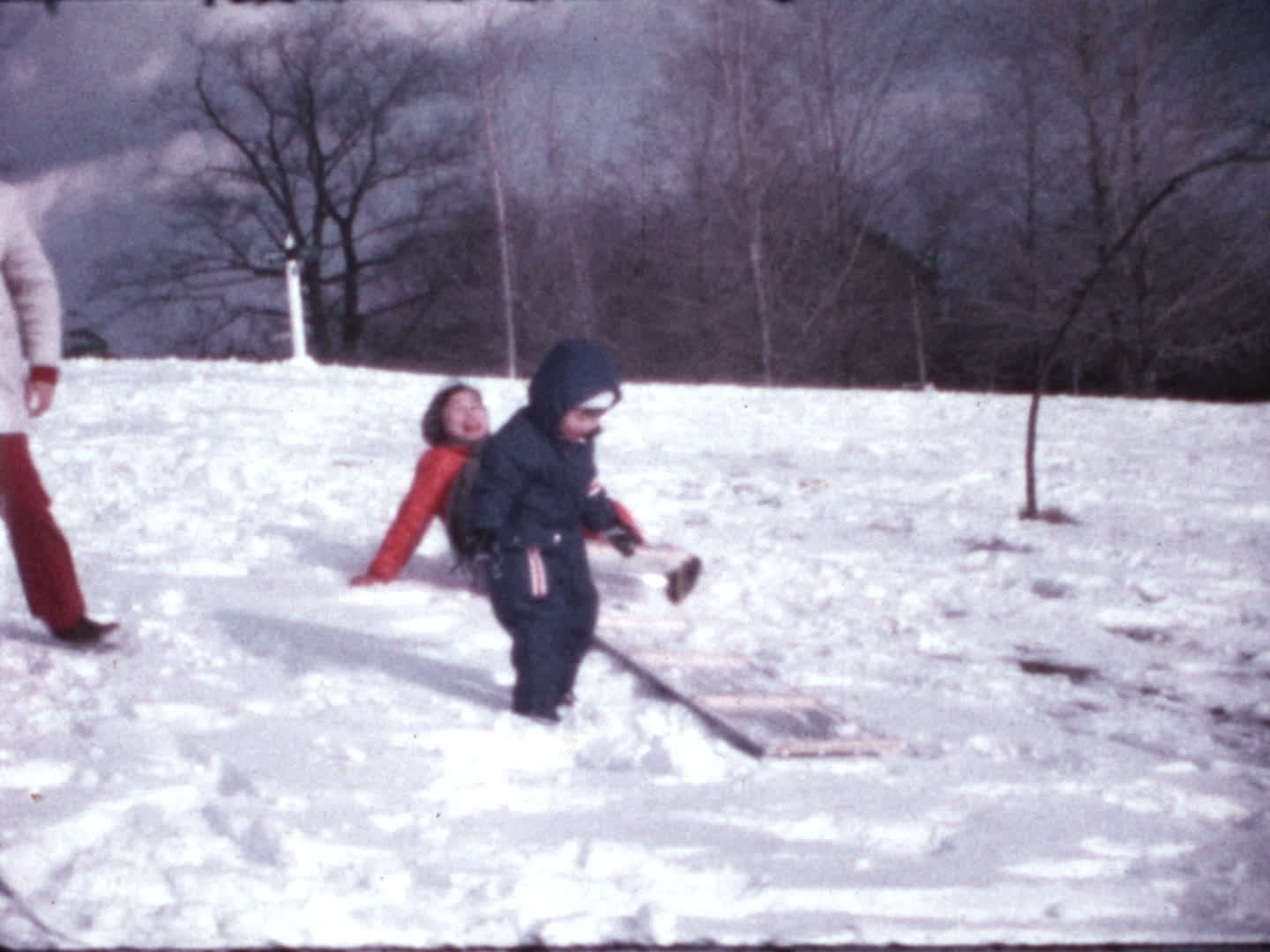 Chen family videos : sledding and ice skating