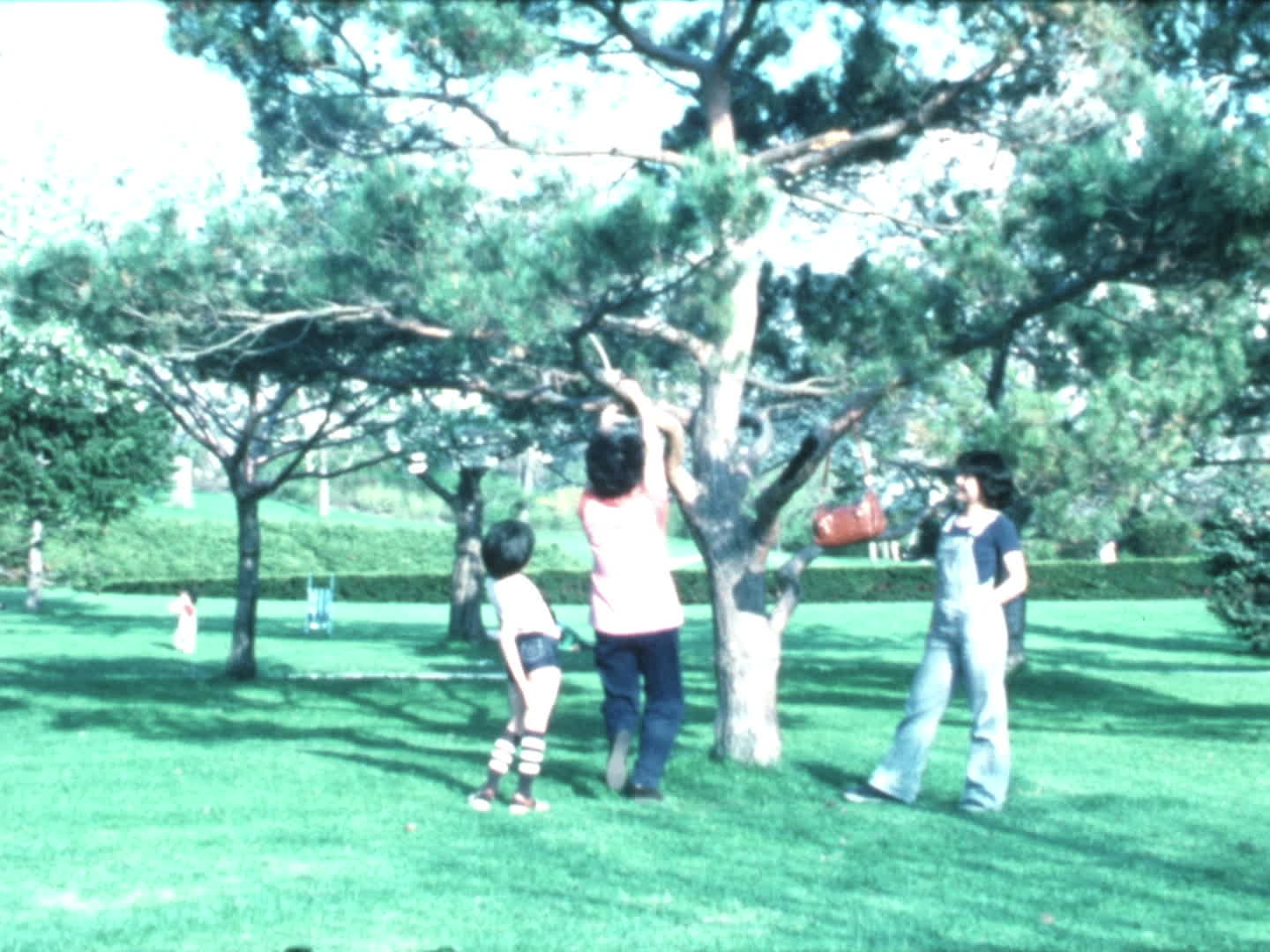 Chen family videos : High Park, May '78