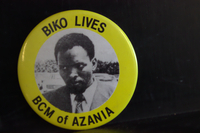 Biko lives button