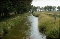 Irrigation ditch in Taber