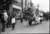 Chinese groups : dragon parade