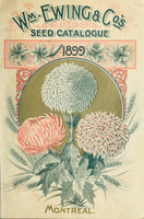 Seed catalogue, 1899