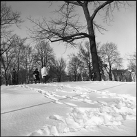 Queen's Park in the winter time with members of the Dirty Shames rock band in the background.