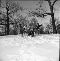 The Dirty Shames rock band posing for a photo in winter in Queen's Park.