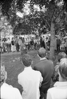 Image of a chimpanzee hanging of a branch as a crowd looks on at a love-in in Queen's Park.
