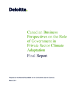 Canadian Business Perspectives on the Role of Government in Private Sector Climate Adaption: Final Report