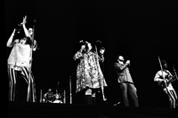Cass Elliot, Michelle Phillips, Denny Doherty, and John Phillips (left to right) in performance as The Mamas and the Papas at Maple Leaf Gardens [negative broken on left side]