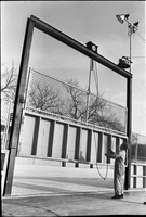 Man lifts the gate joining two rinks at Alexandra Park. The same gate that killed Parks and Recreation employee, Robert McKay.