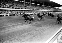 Woodbine Racetrack : harness racing debut under lights