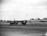 Woodbine Racetrack : Ace Marine winner of Prince of Wales