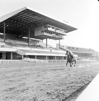 Old Woodbine Racetrack