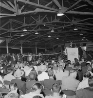 Old Woodbine Racetrack : yearling sale