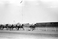 New Woodbine Racetrack : Queens Plate action