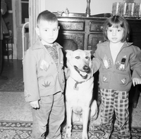 Dog : Sandy : Ron & Rosemary Murray with Dog -- May Be Destroyed