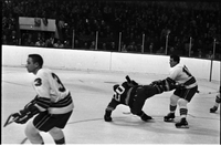 Hockey : Leafs vs Oakland Seals